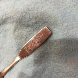 Silver Wedding Spoon